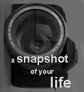 A Snapshot of Your LIfe